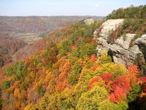 Courthouse Rock in the Red River Gorge Geological Area in Kentucky. Photo by Corey Heitz courtesy of Flickr and Wikipedia Commons).